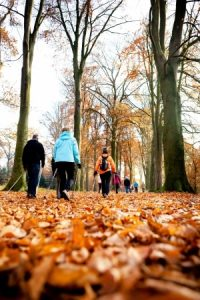 Seniors hiking in fall